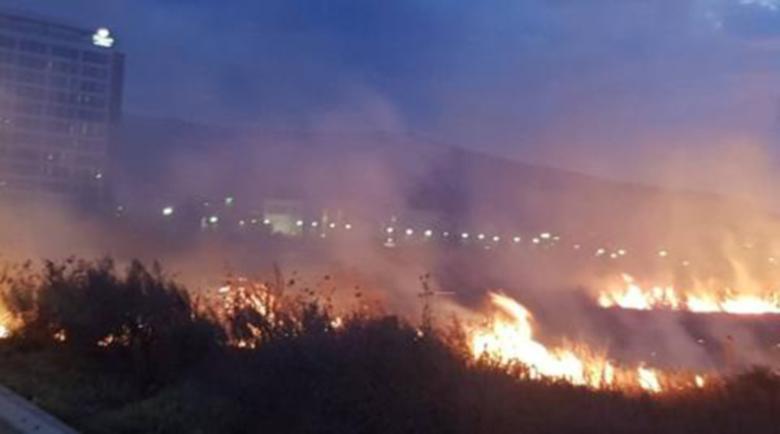 """Потушен е пожарът до летище """"София"""""""