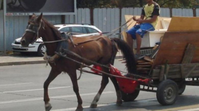Пияни роми изпуснаха фас в каруца, подпалиха я, едва спасиха коня