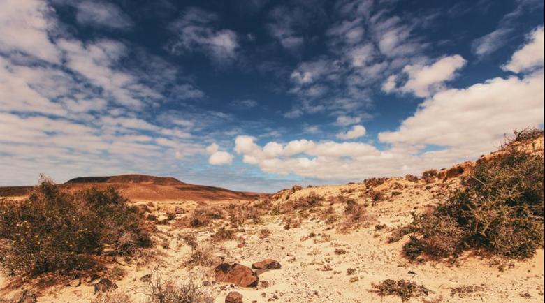 Психопат уби и зарови 24-годишна порно актриса в пустинята