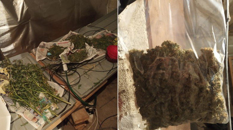 Спипаха 42-годишен пловдивчанин с половин кило марихуана