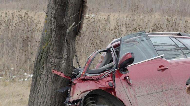 Ужасяващ инцидент! Жена размаза колата си в крайпътно дърво