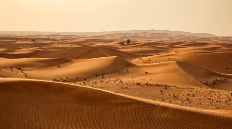 Жена оцеля след две седмици сама в пустинята