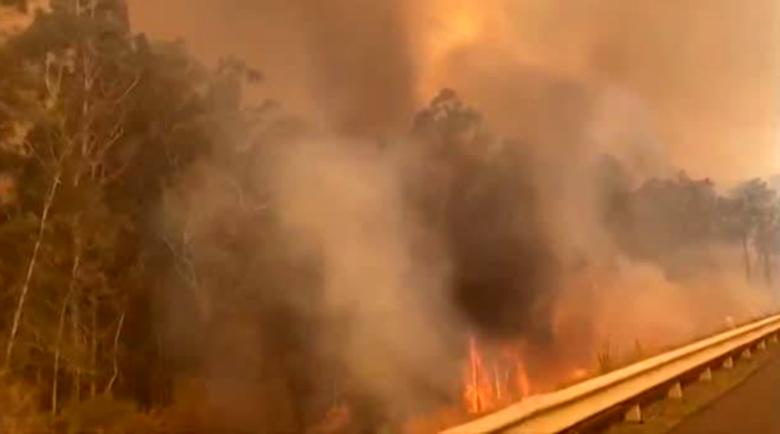 Бедствието в Австралия: Над 200 пожара изпепеляват гори и домове