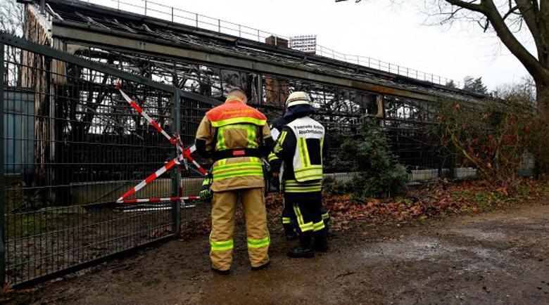 Пожар в зоопарк в Германия, десетки животни загинаха