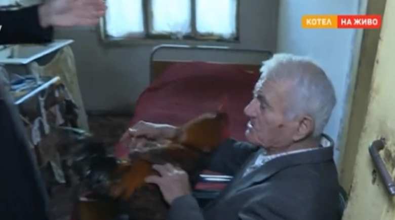 Срамота! Крадци отвлякоха петела на 92-годишен дядо и поискаха откуп
