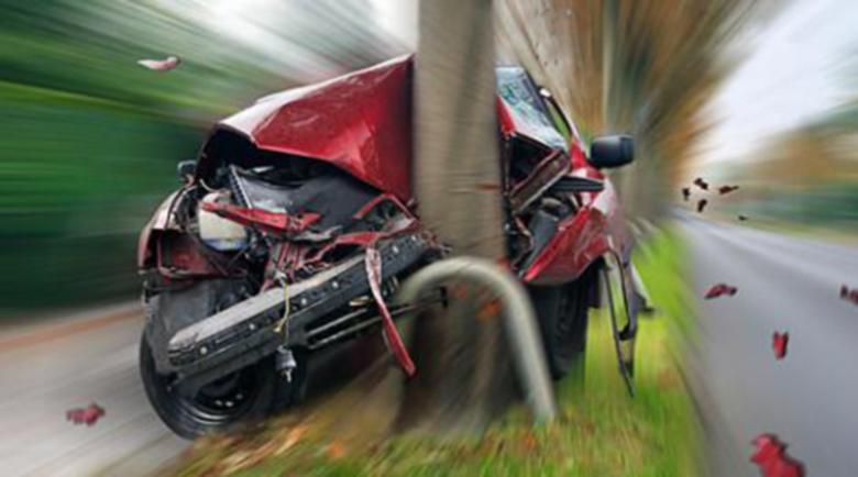Шофьор без книжка се заби в дърво, моторист – в стълб