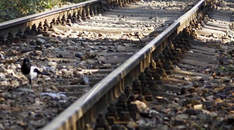 Влак прегази 23-годишна от село Китанчево, легнала на релсите