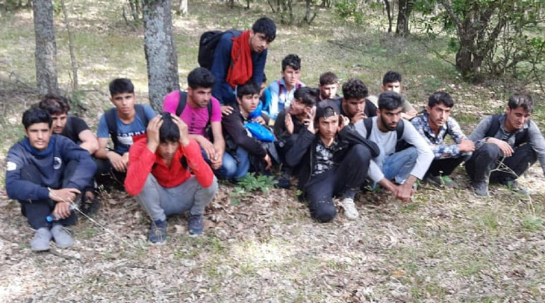 Карат бежанци с бусове за 300 лв., идват през зелена граница от Гърция
