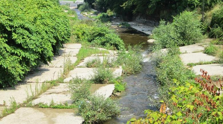Откриха мъж в несвяст във Владайската река, ограбили го