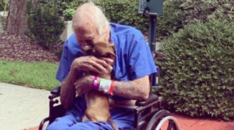 Трогателно: Чихуахуа спаси стопанина си след инсулт
