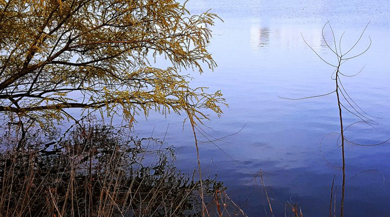 Откриха тяло на жена в езеро в Стара Загора