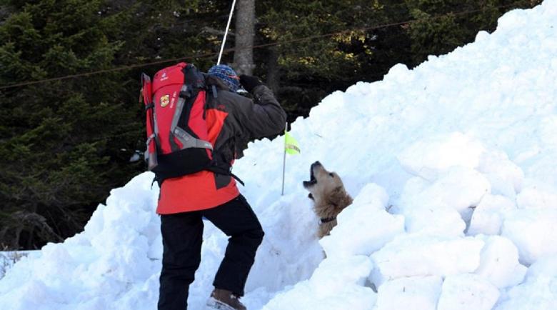 Спасители и кучета все още без следа от изчезналия сноубордист