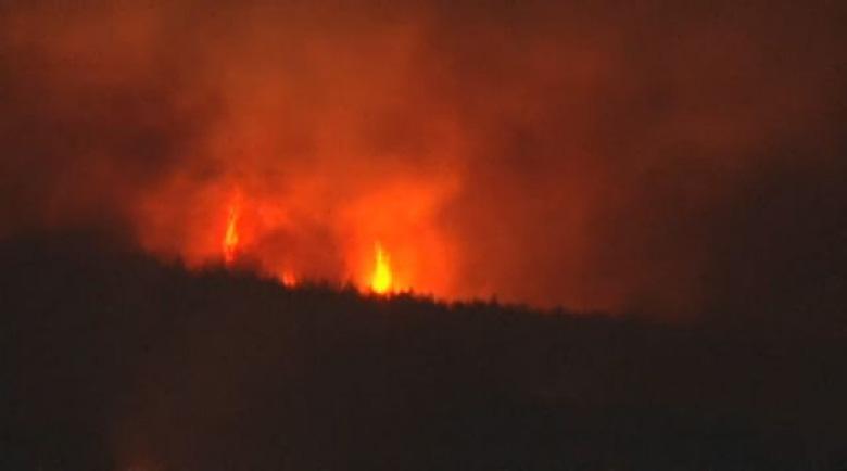 Още гасят пожара край Свиленград